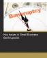 Key Issues in Small Business Bankruptcies