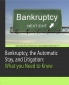 Bankruptcy, the Automatic Stay, and Litigation: What a Litigator Needs to Know