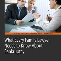 Family Law and Bankruptcy