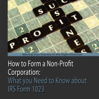 Non-Profit Corporation