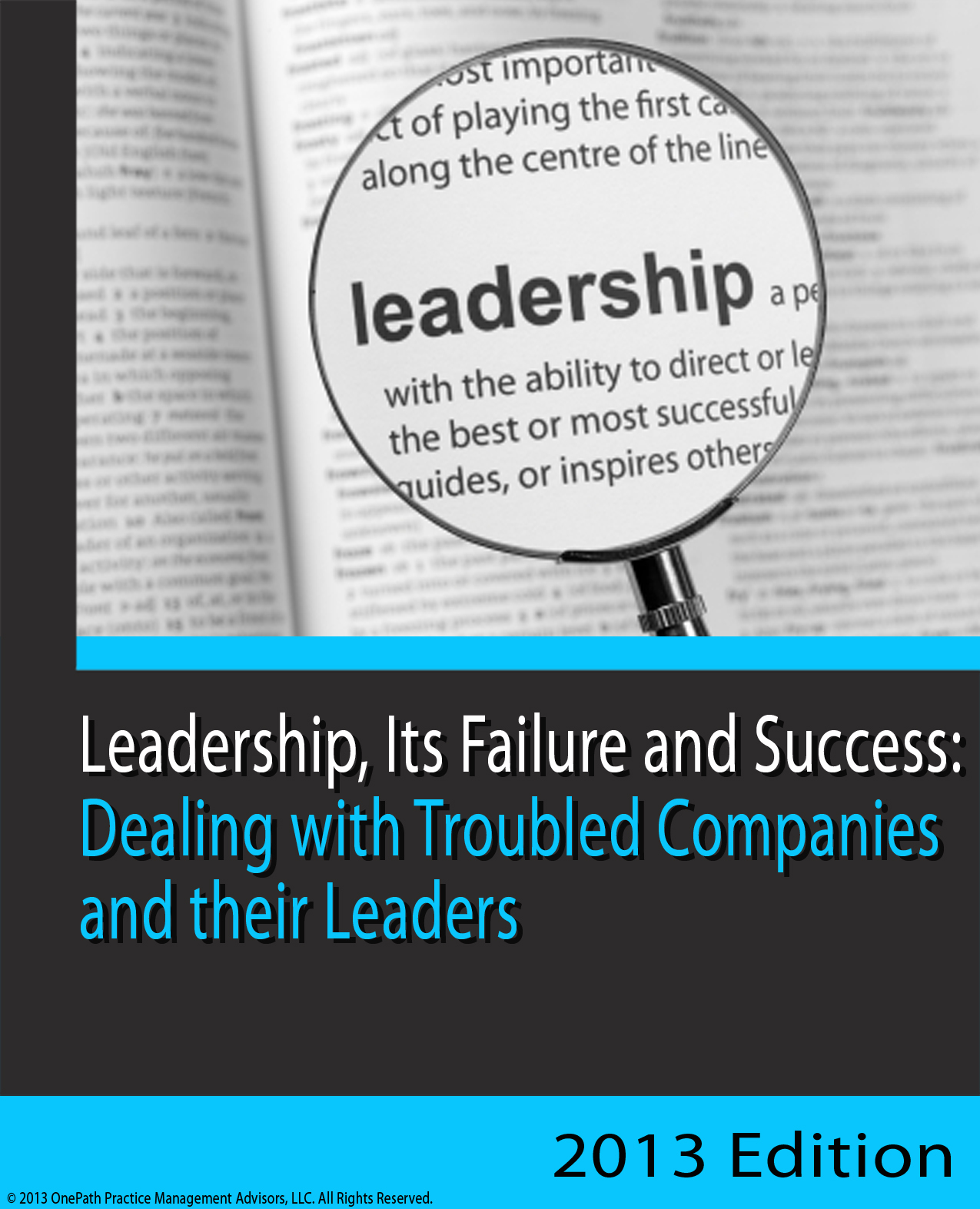 Leadership - the difference between success and failure